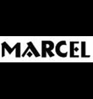 Marcel en Palmas Plaza el primer Businnes Life Center en Puebla Centro comercial y oficinas en renta